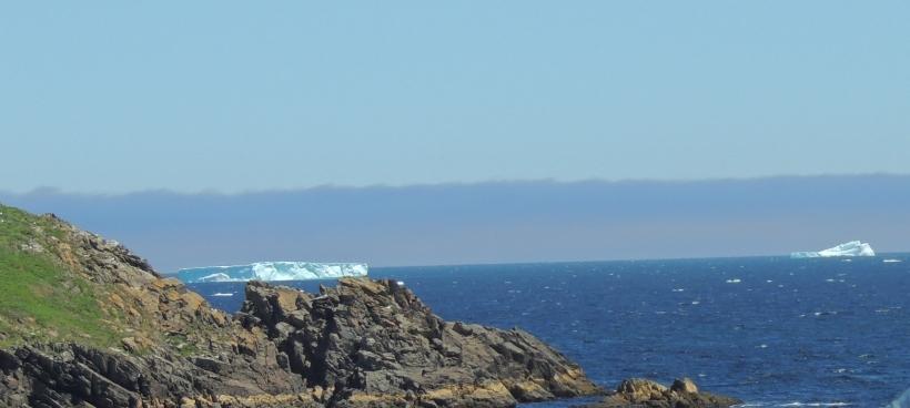 DSCN1854 (glace)